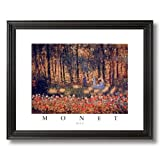 Claude Monet Day Umbrella Flower Contemporary Home Decor Wall Picture Black Framed Art Print