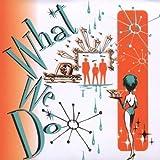 echange, troc Michael MANRING & Vic STEVENS Scott McGILL - What We Do
