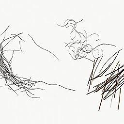 Hair Comparison, w.m. Microscope Slide