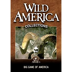 Big Game of America Collection