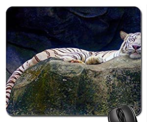 SLEEPING WILD BEAUTY Mouse Pad, Mousepad (Cats Mouse Pad)
