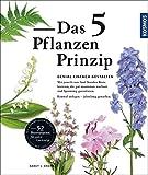 Image de Das 5 Pflanzen Prinzip: Genial gestalten mit nur 5 Staudenarten pro Beet