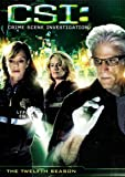 CSI: Crime Scene Investigation - Season 12