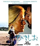 ひきしお[Blu-ray/ブルーレイ]