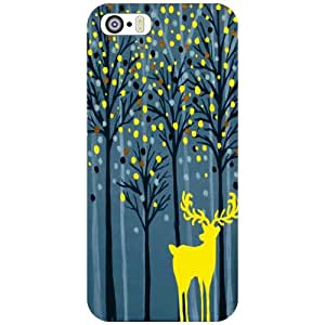 Back Cover For Apple iPhone 5S (Printed Designer)