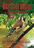 British Birds: Urban Birds in the Garden [DVD]