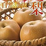 自然農法栽培 梨 豊水 福岡産 2.5kg