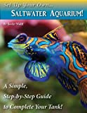 Set Up Your Own Saltwater Aquarium!