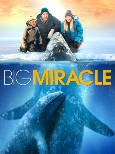 Big Miracle - Jack Amiel
