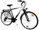 "LANDER Herren Trekking Fahrrad 28"" Zoll (=71,1cm) 21 Gang Shimano Federung Nabendynamo StVZO"