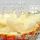 石垣島からの贈り物甘い香りのピーチパイン 2玉入り ランキングお取り寄せ