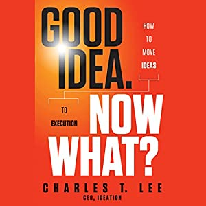 Good Idea. Now What?: How to Move Ideas to Execution Audiobook