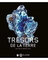 Trésors de terre : Galerie de minéralogie