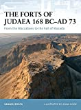 The Forts of Judaea 168 BC-AD 73: From the Maccabees to the Fall of Masada (Fortress, Band 65)