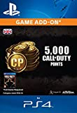 4,000 (+1,000 Bonus) Call of Duty Points [PS4 PSN Code - UK account]