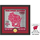 "NCAA Wisconsin Badgers ""State"" Bronze Coin Photo Mint, 18 "" X 14"" X 3"", Bronze"