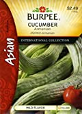 Burpee 69672 Asian - Cucumber Armenian Seed Packet