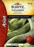 Burpee 69672 Asian - Cucumber Armenian Seed Packet