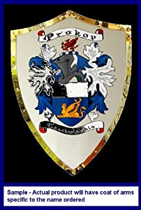 Bohler Family Coats of Arms Hand Painted on 25 x 18 Stainless Steel Battle Shield