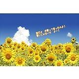 【限定夏のポストカード】「誰だよ 冷夏って言ったのよ! 暑いじゃねーか よー!」向日葵ひまわりのポストカード