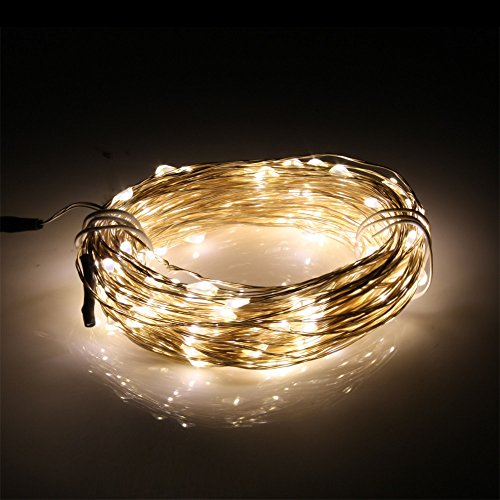 (Special Offer For Christmas)Loftek® Waterproof Starry String Led Lights - 20M/66Ft 200 Leds, Flexible Copper Wire Perfect Choice For Christmas Or Wedding Party Outdoor Indoor Decoration (Natural White, 20M With Adapter)