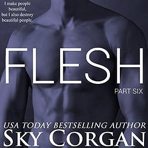 Flesh: Part Six Audiobook