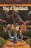 Ring of Aandaleeb: The Hidden Ones (The Djinn Chronicles Book 1)