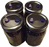 Sterilized Rye Berry Mushroom Substrate in Injectable Jars