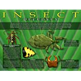 Entomology - Insect Defenses Poster