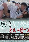 万引き女子校生 強制わいせつ全記録 Vol.02 3時間58分 [DVD]
