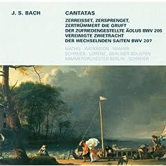 Vereinigte Zwietracht der wechselnden Saiten, BWV 207: Aria: Zieht euren Fuss nur nicht zurucke (Tenor)