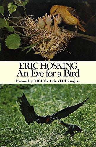 eye-for-a-bird-autobiography-of-a-bird-photographer-english-edition