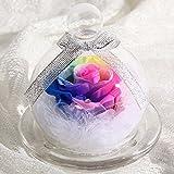 TEATSIGHT(ティートサイト) プリザーブドフラワー ギフト レインボーローズ ガラスポット入り虹色のバラ&スワロフスキー&羽根 フラワーアレンジギフト 【レインボー】