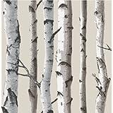 Fine Decor Natural Beige / Cream - Fd31051 - Birch Tree - Forest Woods - Wallpaper