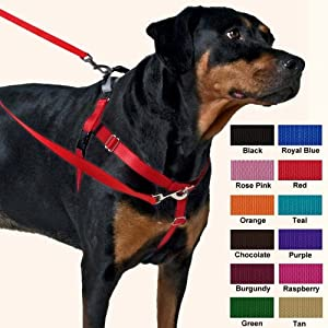 Freedom Harness No Pull Dog Harness: Multi-Use Velvet Lining!