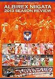 J���[�O�I�t�B�V����DVD �A���r���b�N�X�V��2013�V�[�Y�����r���[[DSSV-135][DVD]