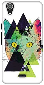 The Racoon Lean Feline Fractals hard plastic printed back case / cover for Micromax Canvas Selfie Lens Q345