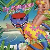 echange, troc The Rippingtons - Life In The Tropics