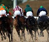 The Art of Professional Bets Horse Racing Method