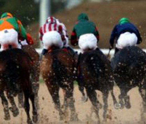 Secure Profits Horse Racing Formula