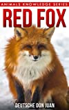 Red Fox: Beautiful Pictures & Interesting Facts Children Book About Red Fox (Animals Knowledge Series) (English Edition)