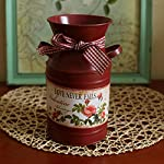 VANCORE(TM) French Style Rustic Shabby Chic Mini Metal Vase Holder Can Container with Tied Bands and Flower Decoration