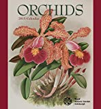 ROYAL BOTANIC GARDEN EDINBURGH 2015 ORCHIDS WALL CALENDAR R474