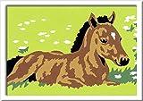 Ravensburger Malen nach Zahlen 29687 - Kleines Fohlen, Malset hergestellt von Ravensburger Spieleverlag