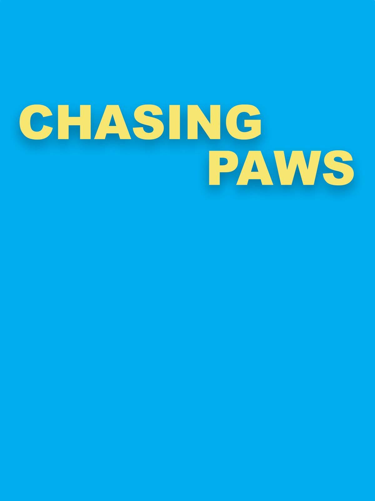 Chasing Paws
