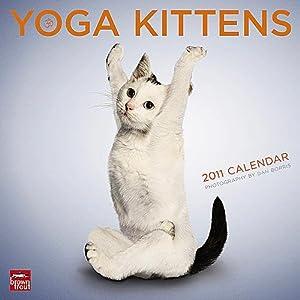 Yoga Kittens 2011 Wall Calendar
