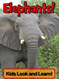Elephants! Learn About Elephants and Enjoy Colorful Pictures - Look and Learn! (50+ Photos of Elephants)
