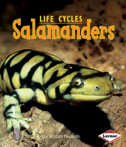 Salamanders (First Step Nonfiction (Paperback))