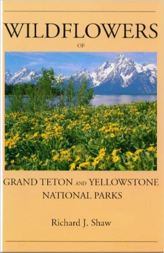 human history of the grand teton