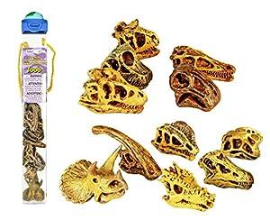 Safari Ltd Dinosaur Skulls TOOB